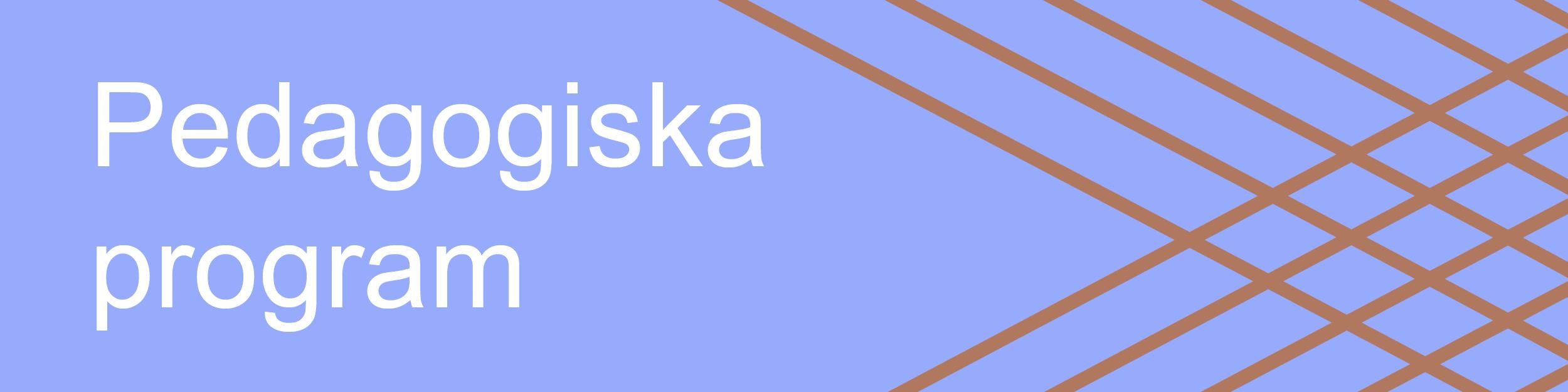 ymd_pedagosgiska-program